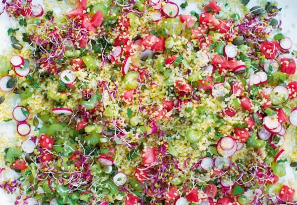 watermelon-salad_019-e1436438265286