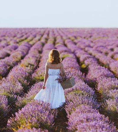 health-boosting flowers