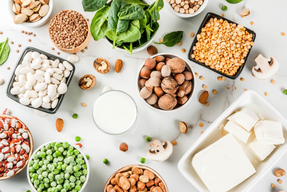 Best protein vegetarian option