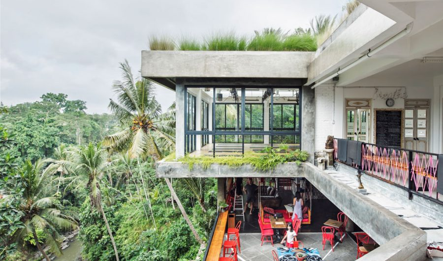 yoga studios in Ubud