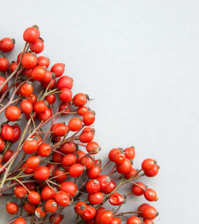 How Rosehip Oil Saved My Skin