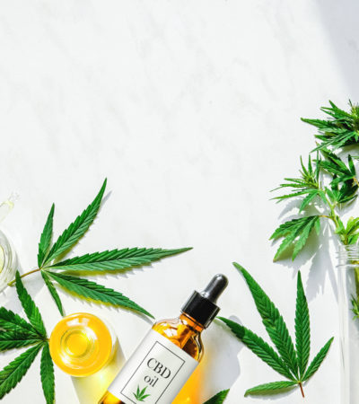 CBD for Beginners: An expert guide to CBD