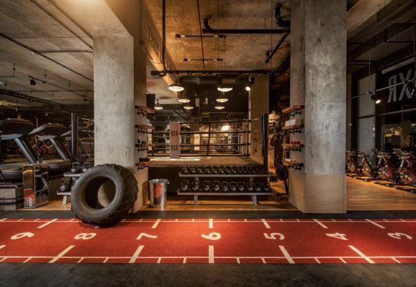 BXR-BoxingGym-HD-6
